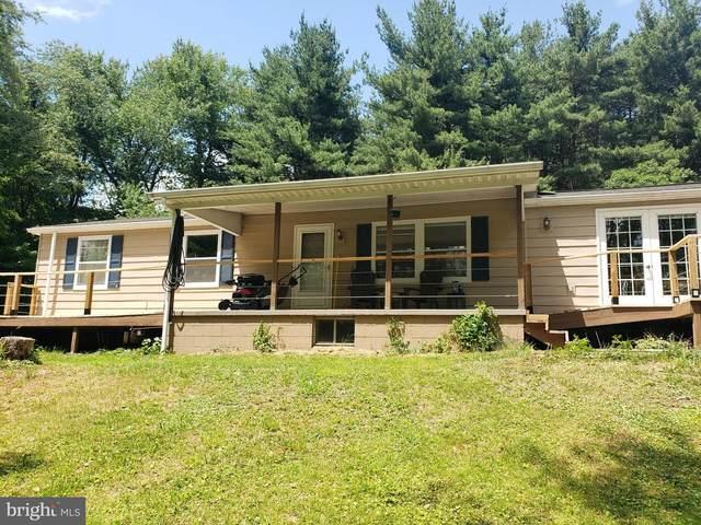 10141 N Cottage Lane, ECKHART, MD 21528 (#MDAL2000132) :: Dart Homes