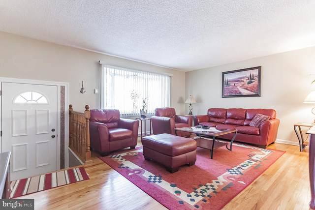 12605 Ramer Road, PHILADELPHIA, PA 19154 (#PAPH2005146) :: Better Homes Realty Signature Properties
