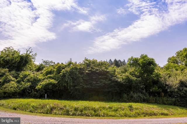 Flint Road, RILEYVILLE, VA 22650 (#VAPA2000062) :: Nesbitt Realty