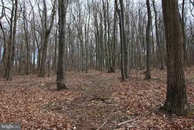 Lee Ridge Lane, CHESTER GAP, VA 22623 (#VARP2000028) :: Nesbitt Realty