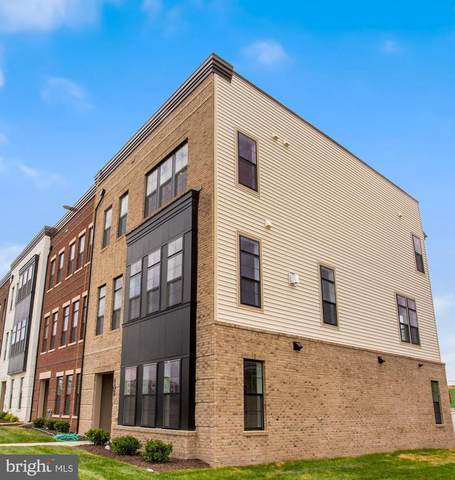 19873 Stewart Gap Terrace, ASHBURN, VA 20147 (#VALO2001654) :: Sunrise Home Sales Team of Mackintosh Inc Realtors