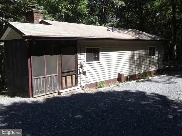 55 Mountain Top Lane, NEW MARKET, VA 22844 (#VASH2000214) :: Debbie Dogrul Associates - Long and Foster Real Estate