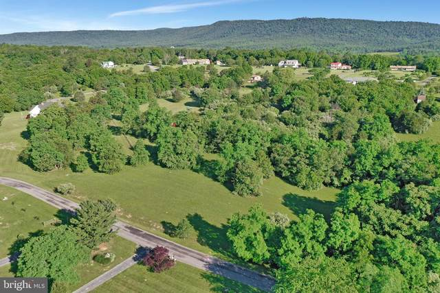 Fairview Circle, WOODSTOCK, VA 22664 (#VASH2000218) :: Debbie Dogrul Associates - Long and Foster Real Estate