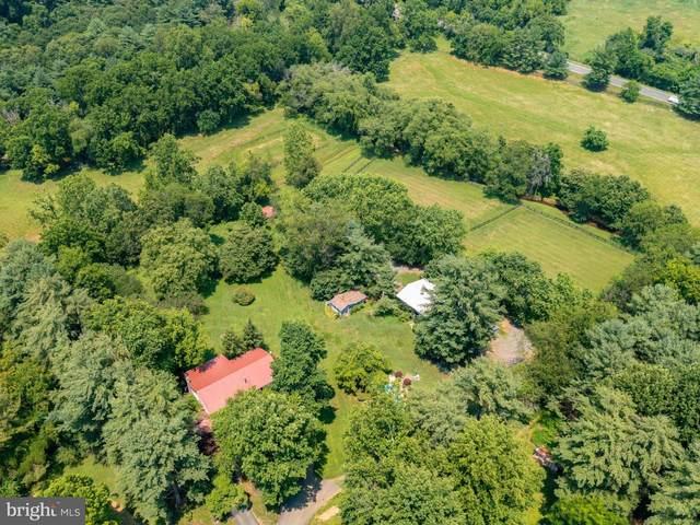 39270 Still Meadow Lane, HAMILTON, VA 20158 (#VALO2001934) :: Peter Knapp Realty Group
