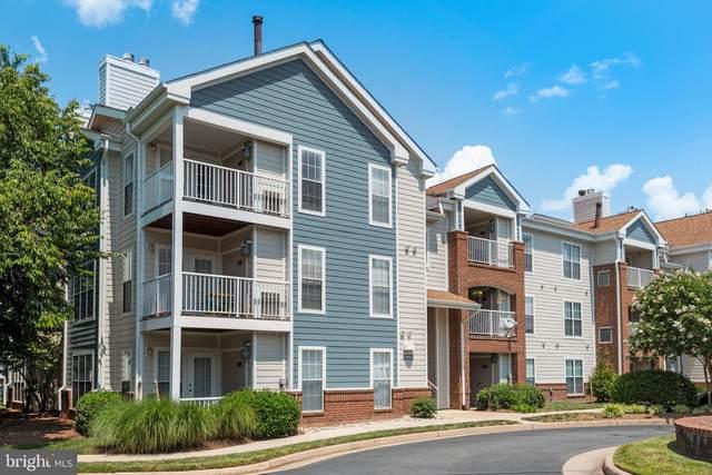 21033 Timber Ridge Terrace #204, ASHBURN, VA 20147 (#VALO2001956) :: City Smart Living