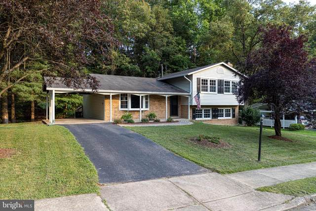 7223 Briarcliff Drive, SPRINGFIELD, VA 22153 (#VAFX2005040) :: Debbie Dogrul Associates - Long and Foster Real Estate