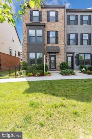22438 Morning Shade Terrace, ASHBURN, VA 20148 (#VALO2002040) :: Debbie Dogrul Associates - Long and Foster Real Estate