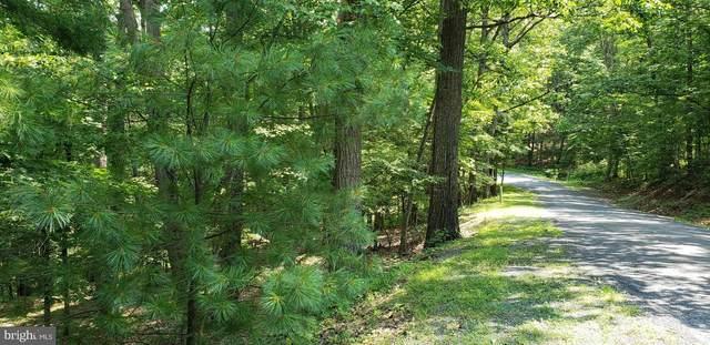 . Ryan Road, BASYE, VA 22810 (#VASH2000238) :: Debbie Dogrul Associates - Long and Foster Real Estate