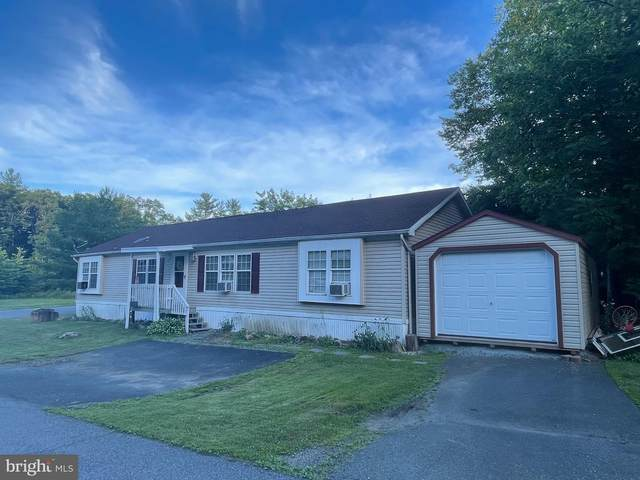 345 All Kings Drive, NEW RINGGOLD, PA 17960 (#PASK2000296) :: The Craig Hartranft Team, Berkshire Hathaway Homesale Realty