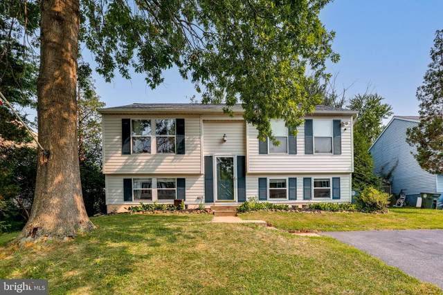 1319 Danberry Drive, FREDERICK, MD 21703 (#MDFR2001454) :: The Putnam Group