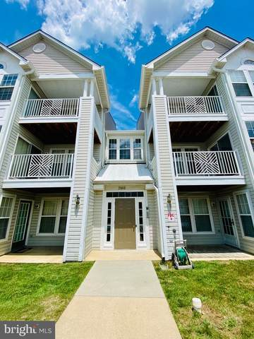 2440 Blue Spring Court #204, ODENTON, MD 21113 (#MDAA2002418) :: Charis Realty Group