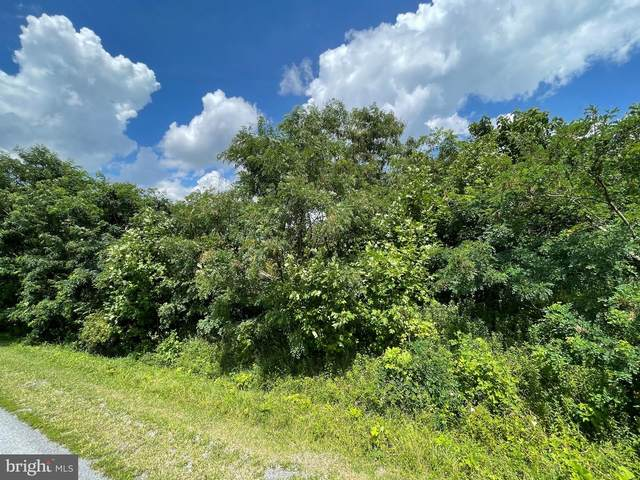 Freezeland View Ln, LINDEN, VA 22642 (#VAWR2000224) :: Nesbitt Realty