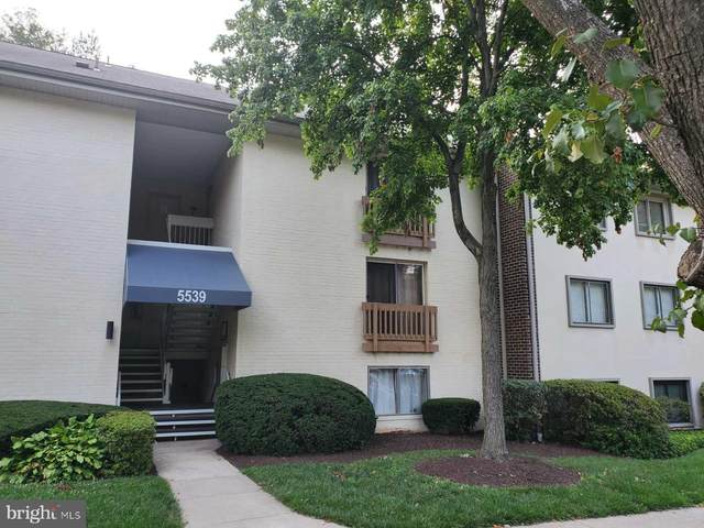 5539 Green Mountain Circle #6, COLUMBIA, MD 21044 (#MDHW2001236) :: City Smart Living