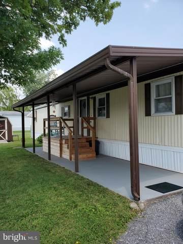 5 Birch Street, MIDDLETOWN, PA 17057 (#PADA2000916) :: The Joy Daniels Real Estate Group