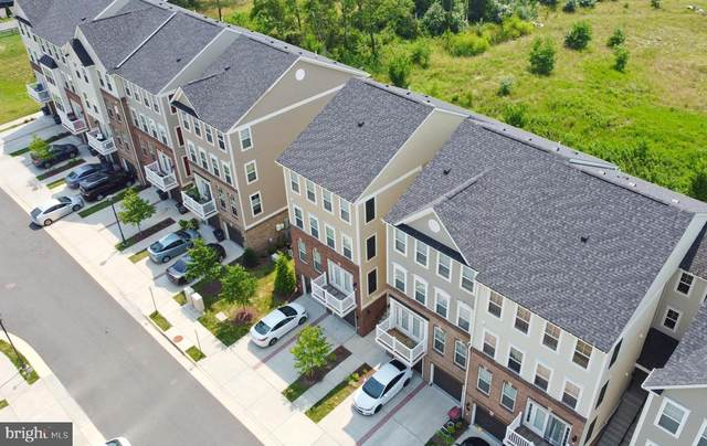 43377 Town Gate Square, CHANTILLY, VA 20152 (#VALO2002370) :: Peter Knapp Realty Group
