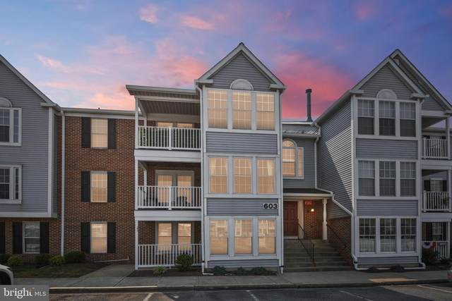 603 Himes Avenue #111, FREDERICK, MD 21703 (#MDFR2001566) :: The Vashist Group