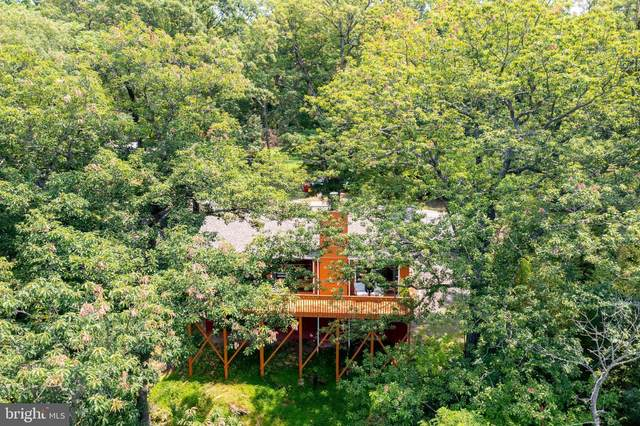 325 Long Leaf Lane, HARPERS FERRY, WV 25425 (#WVJF2000308) :: Better Homes Realty Signature Properties