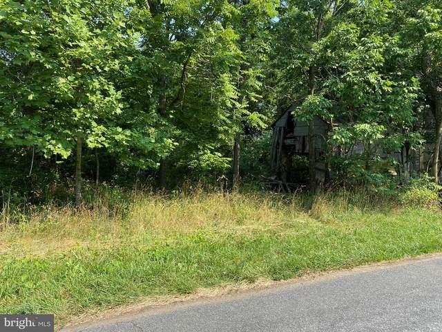 0 Ridgeview Road, MADISON, VA 22727 (#VAMA2000038) :: The Redux Group