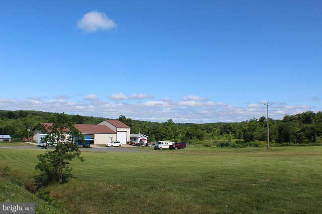146 & 190 Power Station Highway, MOUNT STORM, WV 26739 (#WVGT2000018) :: AJ Team Realty
