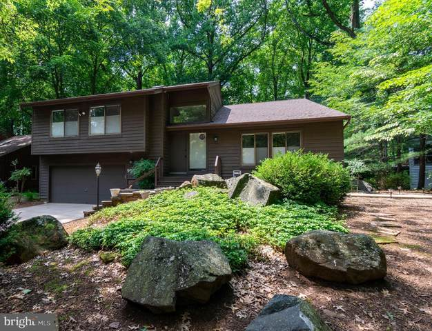 9516 White Spring Way, COLUMBIA, MD 21046 (#MDHW2001378) :: Bowers Realty Group