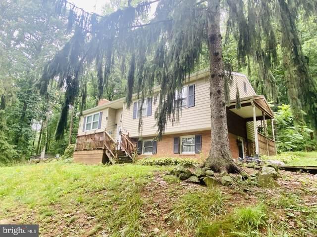 764 Fishing Creek Road, NEW CUMBERLAND, PA 17070 (#PAYK2001858) :: The Joy Daniels Real Estate Group