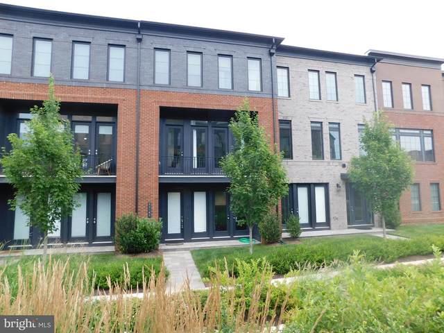 23103 Cottonwillow Square, BRAMBLETON, VA 20148 (#VALO2002684) :: Sunrise Home Sales Team of Mackintosh Inc Realtors
