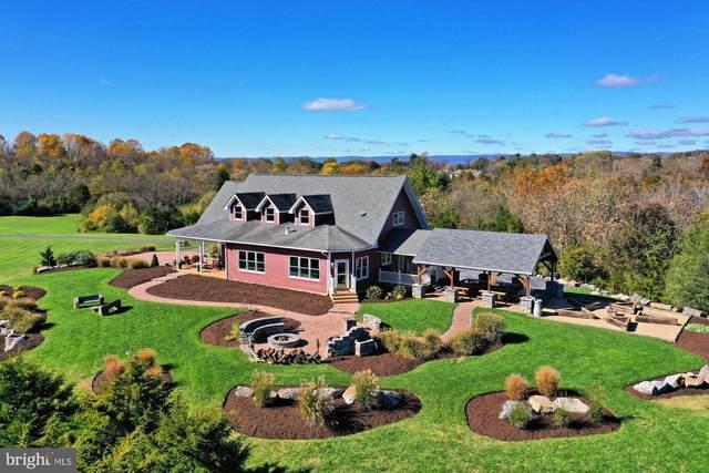 112 Shyrock Lane, EDINBURG, VA 22824 (#VASH2000288) :: Debbie Dogrul Associates - Long and Foster Real Estate