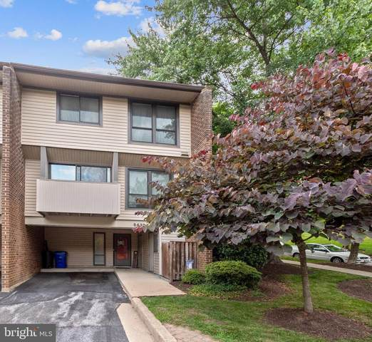 5430 Ring Dove Lane D-1-10, COLUMBIA, MD 21044 (#MDHW2001506) :: The Vashist Group