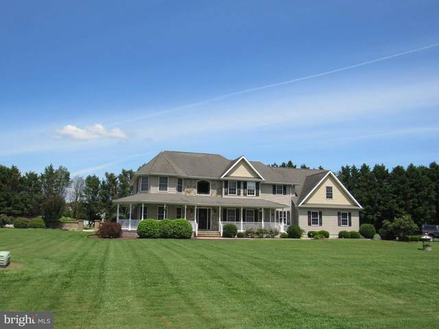 146 S Paula Lynne Drive, SEAFORD, DE 19973 (#DESU2001886) :: Linda Dale Real Estate Experts
