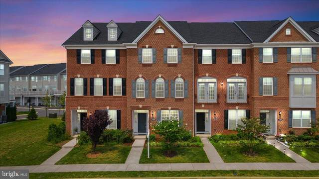 23480 Madison Heights Terrace, ASHBURN, VA 20148 (#VALO2002812) :: Charis Realty Group
