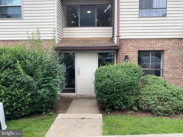 280 Bridgewater Road A12, BROOKHAVEN, PA 19015 (#PADE2002208) :: Linda Dale Real Estate Experts
