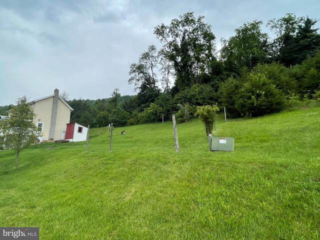 Off Thorn Bottom Road, WARDENSVILLE, WV 26851 (#WVHD2000100) :: The Redux Group