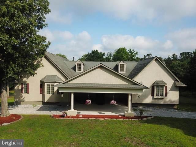 169 Watsons Mill Road, PITTSGROVE, NJ 08318 (MLS #NJSA2000366) :: Kiliszek Real Estate Experts