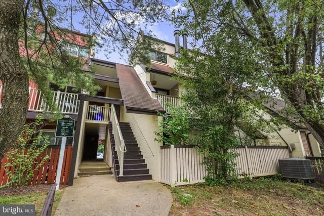 3907 Woodhue Place #12, ALEXANDRIA, VA 22309 (#VAFX2007266) :: Peter Knapp Realty Group