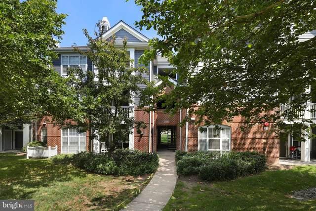 20281 Beechwood Terrace #301, ASHBURN, VA 20147 (#VALO2002992) :: Eng Garcia Properties, LLC