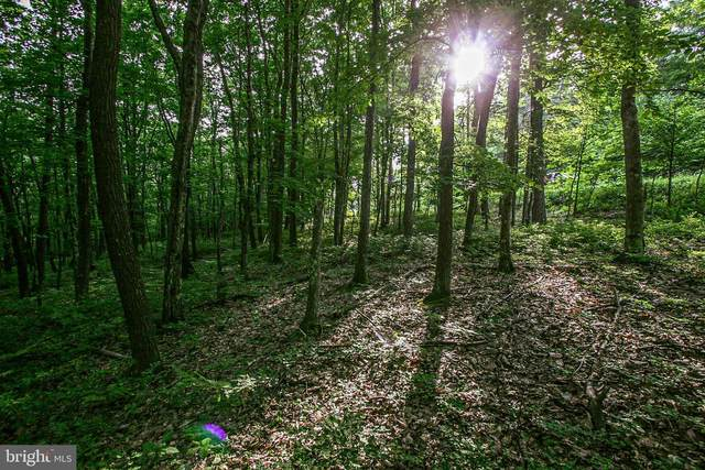 LOT 55 Tall Oaks Drive, OAKLAND, MD 21550 (#MDGA2000334) :: The Vashist Group
