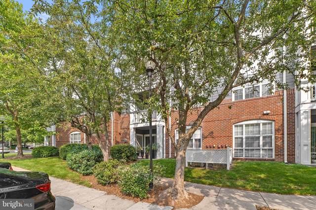 20313 Beechwood Terrace #103, ASHBURN, VA 20147 (#VALO2003198) :: Eng Garcia Properties, LLC