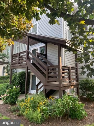 10015 Oakton Terrace Road #10015, OAKTON, VA 22124 (#VAFX2007752) :: AJ Team Realty