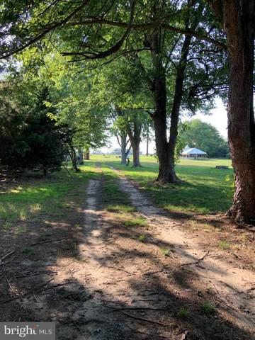 20929 Johnson Road, LINCOLN, DE 19960 (#DESU2002142) :: The Allison Stine Team