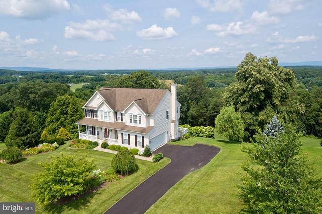 136 Bronze Manor Court, WINCHESTER, VA 22603 (#VAFV2000622) :: Nesbitt Realty