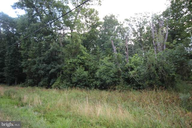 00 Sumerduck Road, REMINGTON, VA 22734 (#VAFQ2000494) :: Great Falls Great Homes