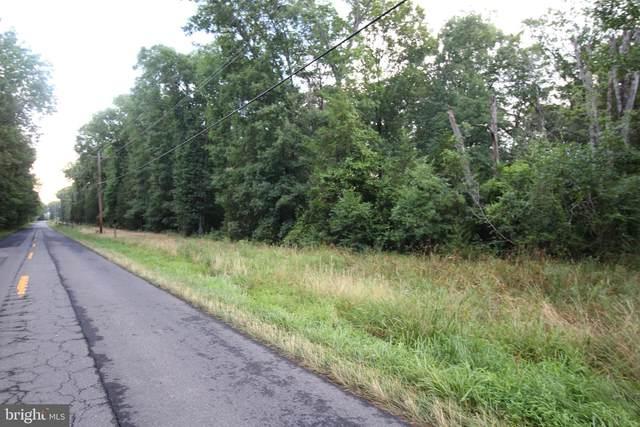 000 Sumerduck, REMINGTON, VA 22734 (#VAFQ2000498) :: Great Falls Great Homes