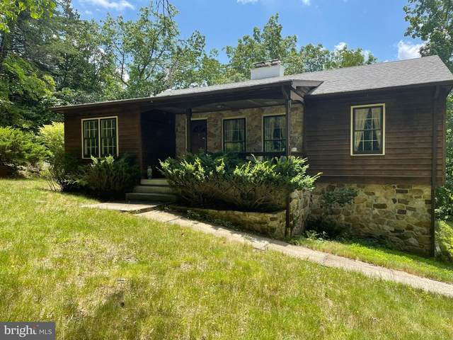 357 Pleasant Valley, LOST RIVER, WV 26810 (#WVHD2000106) :: The Redux Group