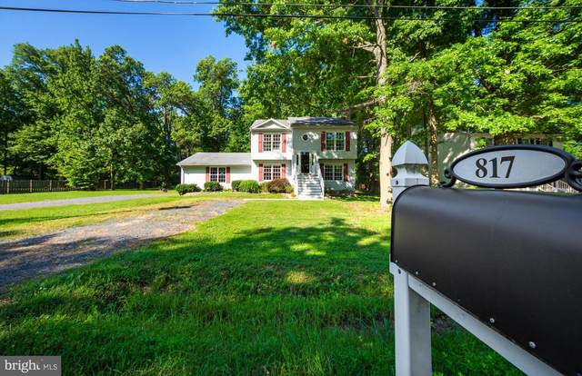 817 Petinot Place, STEVENSVILLE, MD 21666 (#MDQA2000366) :: Realty Executives Premier