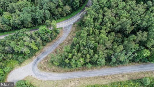 Lot 1 Cherrywood Drive, OAKLAND, MD 21550 (#MDGA2000342) :: CENTURY 21 Core Partners