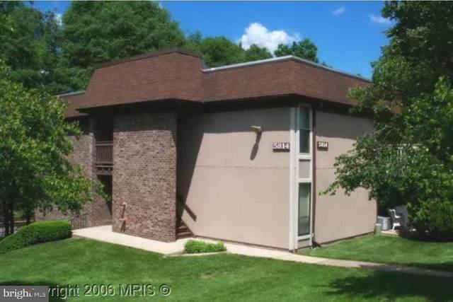 5814 Royal Ridge Drive M, SPRINGFIELD, VA 22152 (#VAFX2008152) :: Shawn Little Team of Garceau Realty