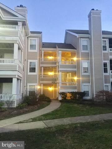 14325 Climbing Rose Way #102, CENTREVILLE, VA 20121 (#VAFX2008156) :: Debbie Dogrul Associates - Long and Foster Real Estate