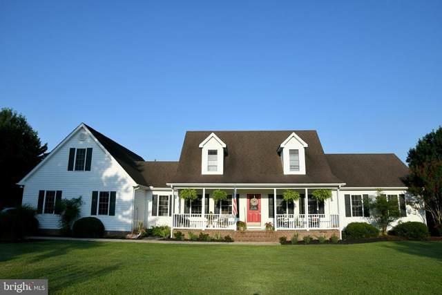 5528 Marlan Drive, TRAPPE, MD 21673 (MLS #MDTA2000264) :: Maryland Shore Living | Benson & Mangold Real Estate