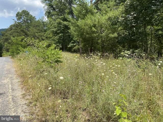 350 Forest Rd, LURAY, VA 22835 (#VAPA2000124) :: Nesbitt Realty