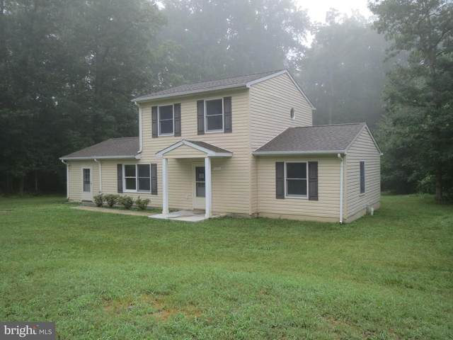 158 Camel Hump Court, LURAY, VA 22835 (#VAPA2000126) :: Debbie Dogrul Associates - Long and Foster Real Estate